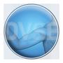 DVSE_Logo